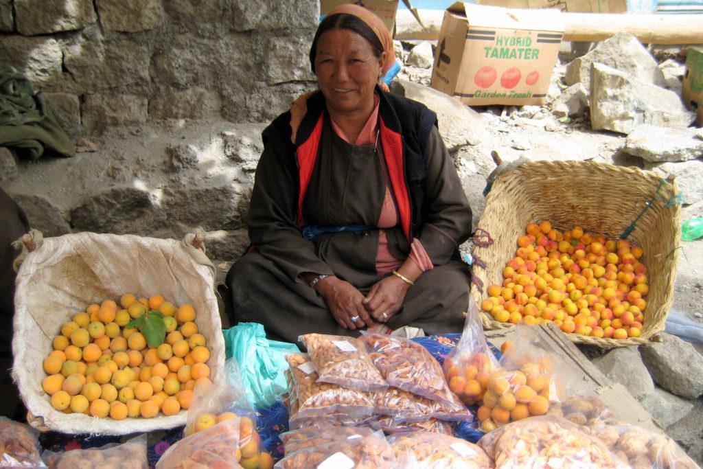 Aprikosen gehören zu den wenigen Obstsorten, die in 3.500 Meter Höhe noch wachsen und, frisch oder getrocknet, fixer Bestandteil der täglichen Ernährung sind. Die Bäuerin ist eine in einer langen Reihe von Aprikosenverkäuferinnen am Straßenrand auf dem Weg nach Kargil.