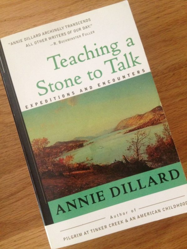 Teaching a Stone to Talk Summary & Study Guide
