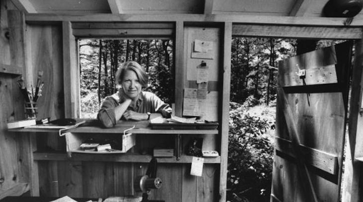 annie dillard teaching a stone to talk pdf